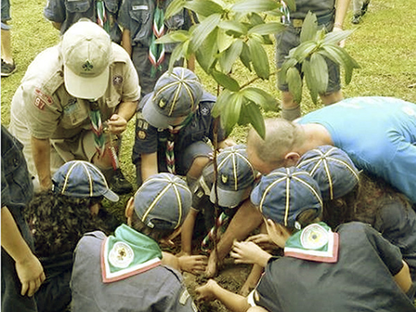 Escoteiros Itapeva realizam plantio  de árvores nativas na sede do Grupo