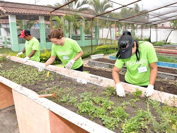 Voluntários cuidam da horta da Apae
