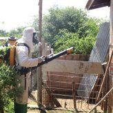 Pindamonhangaba intensifica ações de combate à dengue