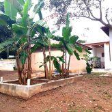 Secretaria de Meio Ambiente implanta instalação modelo em sustentabilidade