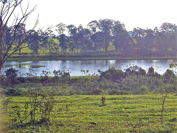 Daee, Apta e Prefeitura realizam vistoria técnica na represa do antigo Haras para retomada da canoagem